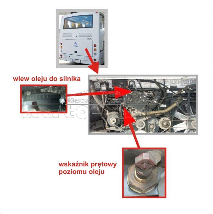 sprawdzenie poziomu oleju w silniku AUTOBUS AUTOSAN A10-10T.07.01 A1010T egzamin na prawo jazdy kat. D